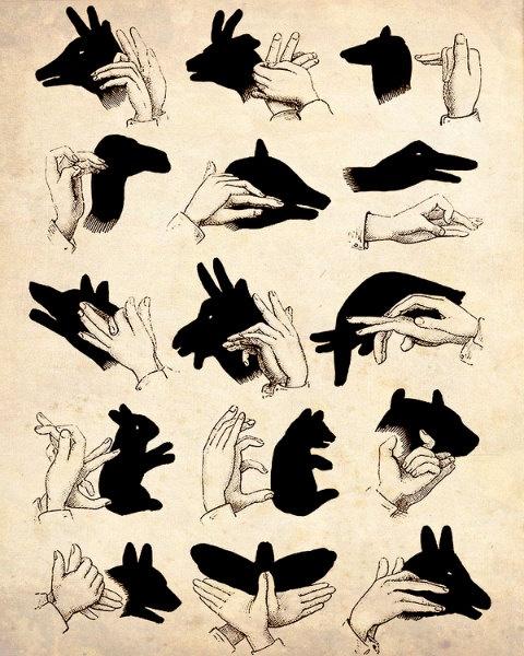 Is it a Fox, a bird, a hen? No it's a hand.